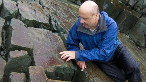 Guy Narbonne, a paleontologist at Queen's University in Ontario, inspects a fossil at the Mistaken Point Ecological Reserve in Newfoundland. It's filled with half-a-billion-year-old treasures like this one.