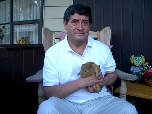 Angel Blas, 51 and from Peru, sits on the porch of his house in Everett, MA with one of his guinea pigs.