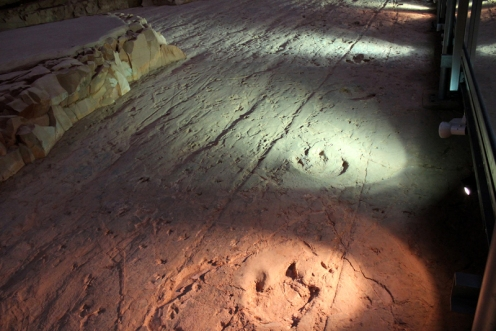 At Dinosaur Stampede National Monument, large footprints are illuminated along the right, while little footprints are spread across the remainder of the rock face.