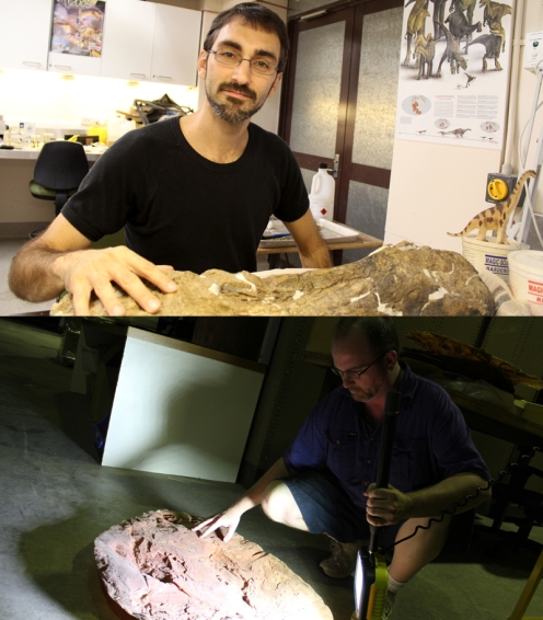 Anthony Romilio (top) and Scott Hocknull (bottom) debate just what a herd of dinosaurs were doing 95 million years ago.
